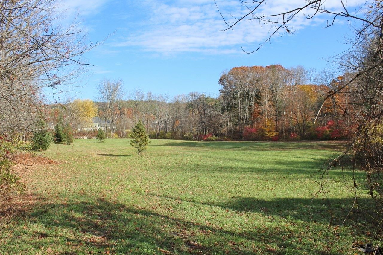 Springfield VT 05156Land for sale $List Price is $35,000
