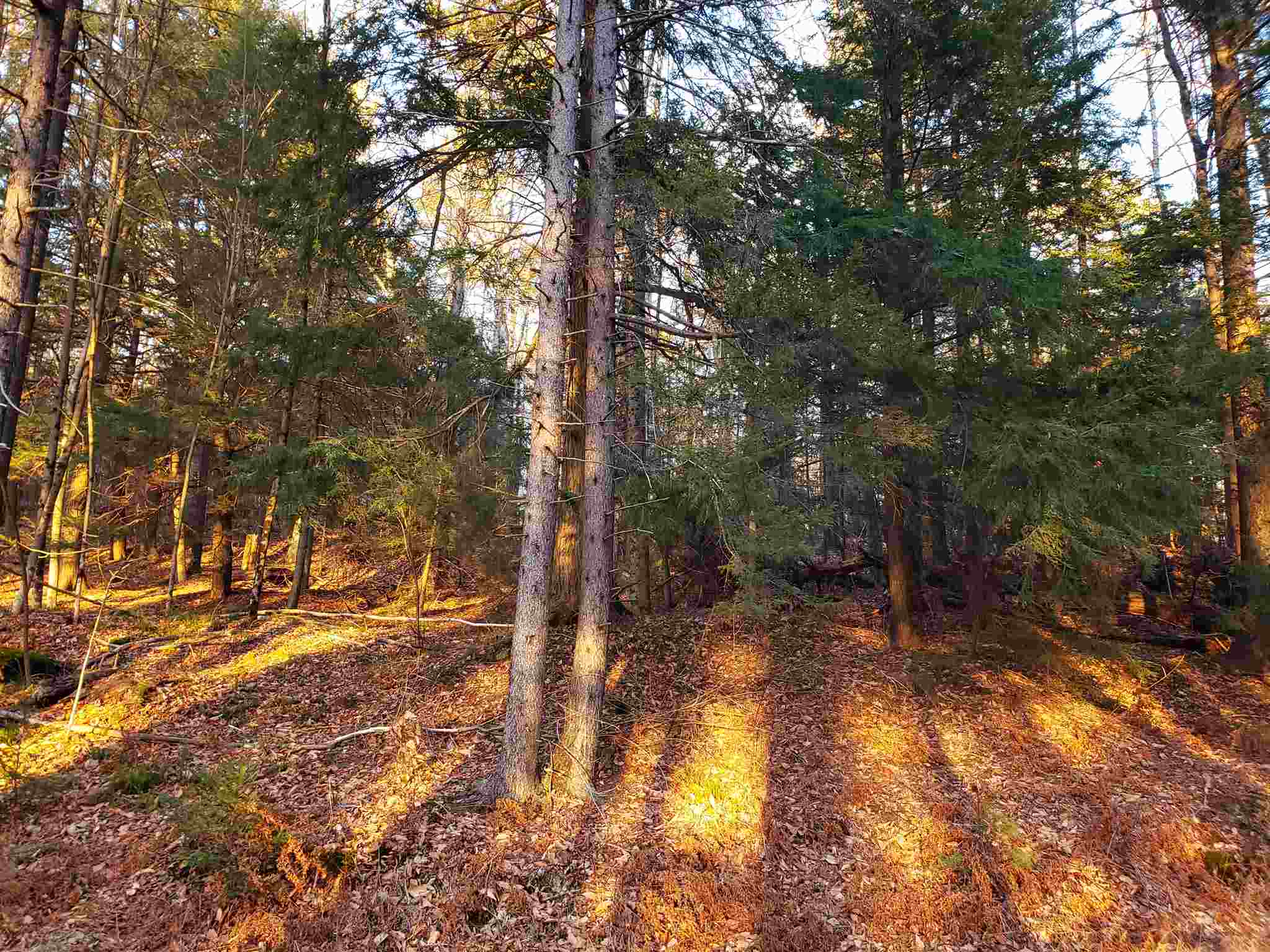 Washington NH 03280 Land for sale $List Price is $26,500