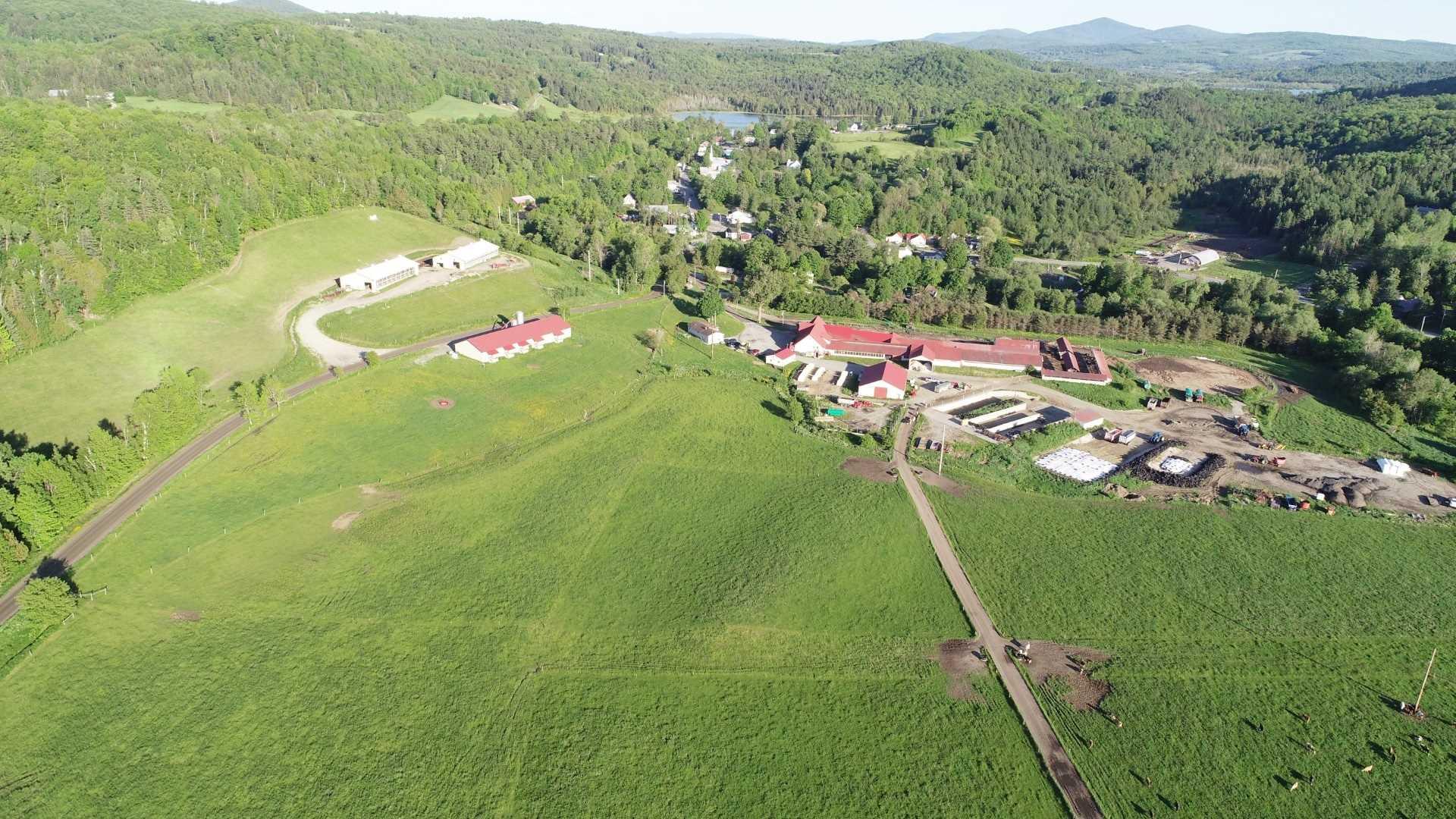 Roy Farm
