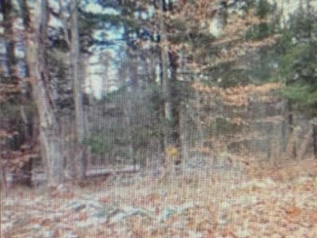 Village of Quechee in Town of Hartford VT  05059Land for sale $List Price is $12,000