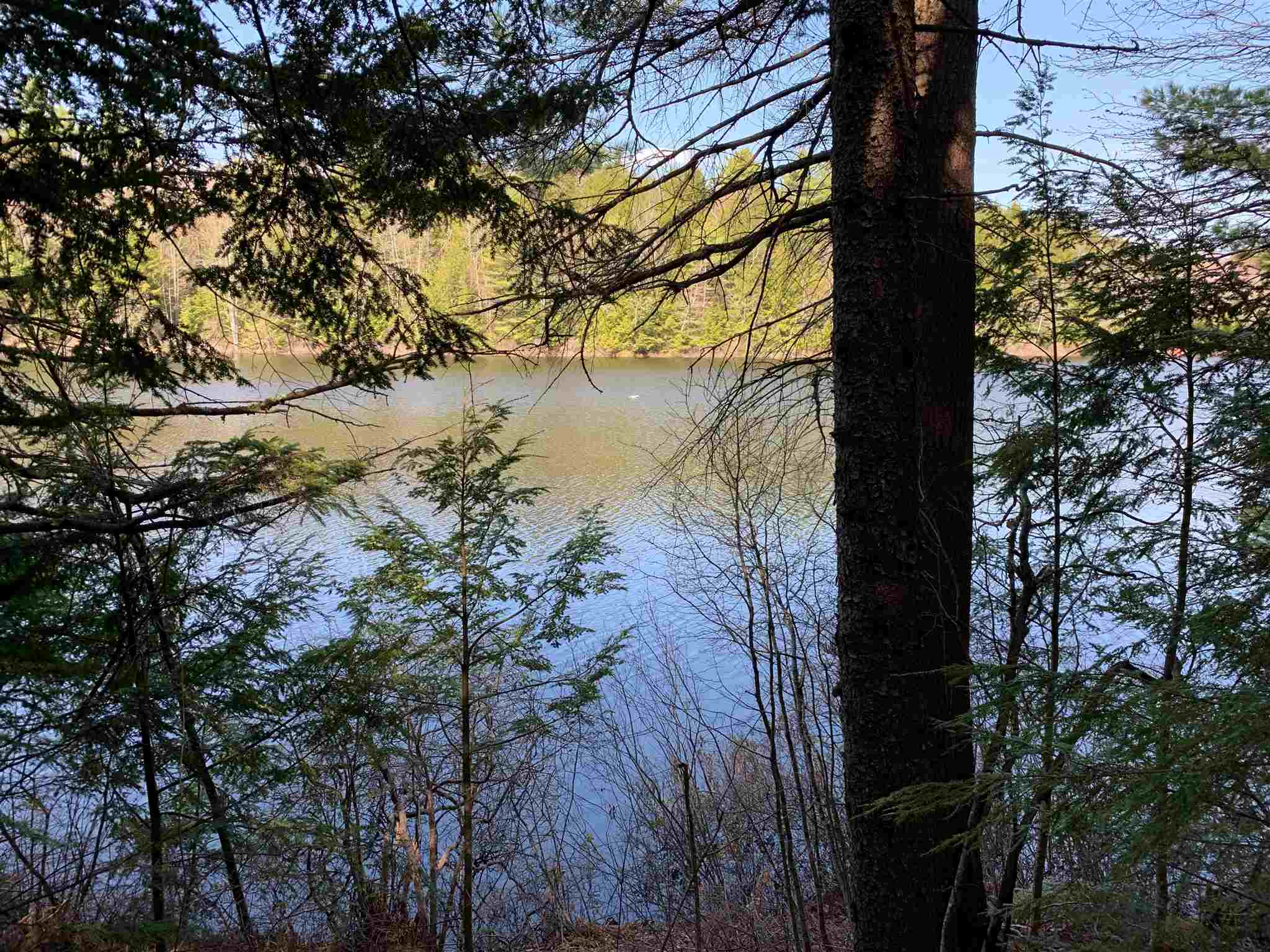 Village of Eastman in Town of Grantham NH  03753Land for sale $List Price is $119,053