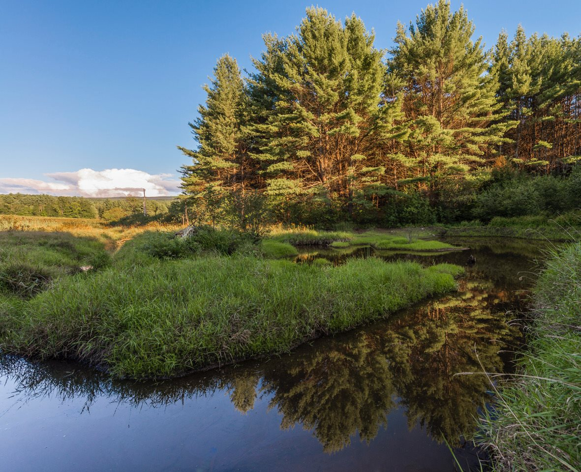 Plainfield NH 03770Land for sale $List Price is $359,900