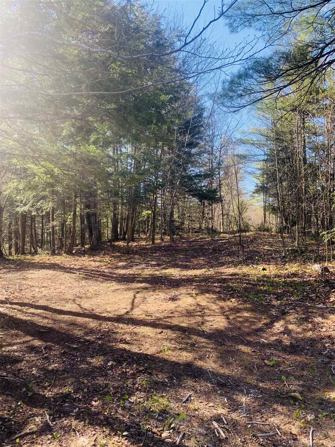 image of Acworth NH Land | 45.07 Acres