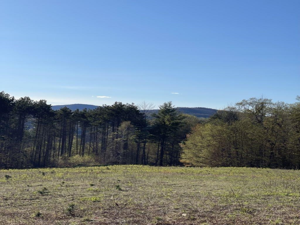 Reading VT 05062Land for sale $List Price is $1,195,500