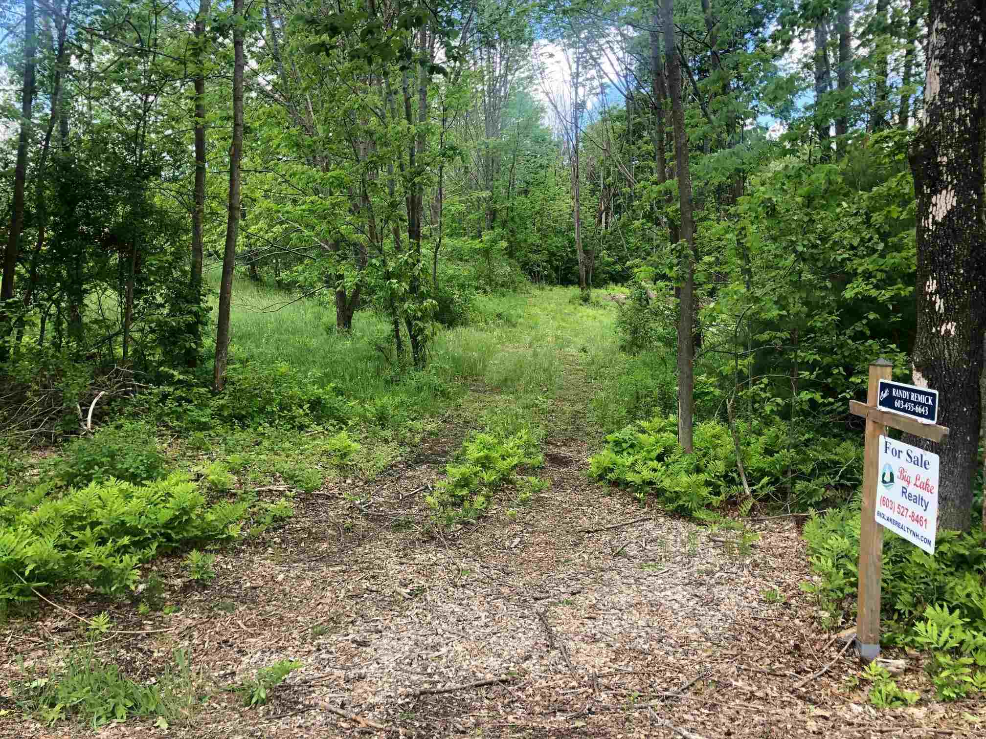 GILFORD NHLAND  for sale $$119,000   1.54 Acres    Price Per Acre $0