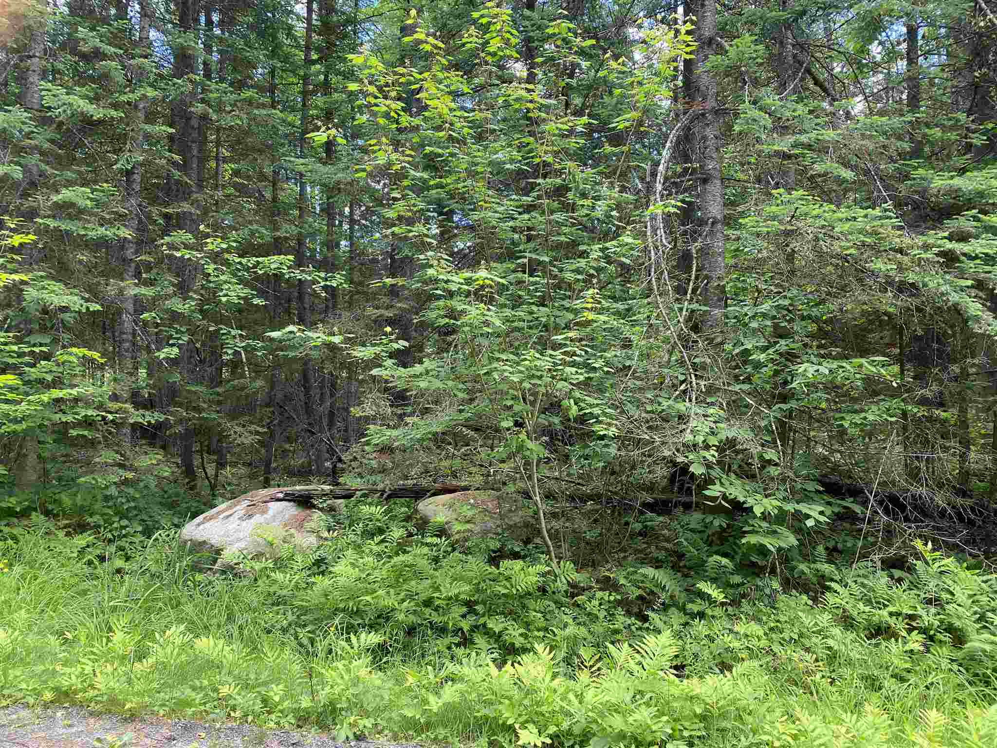 Village of Eastman in Town of Grantham NH  03753Land for sale $List Price is $24,900