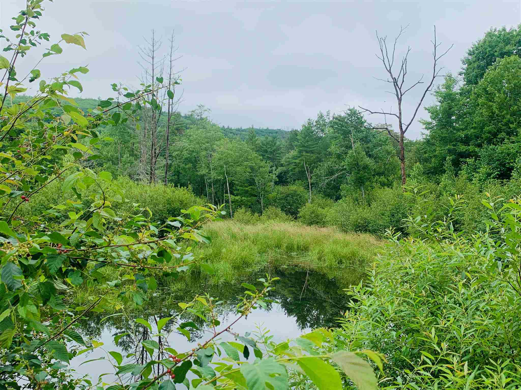 Langdon NH 03602Land for sale $List Price is $225,000
