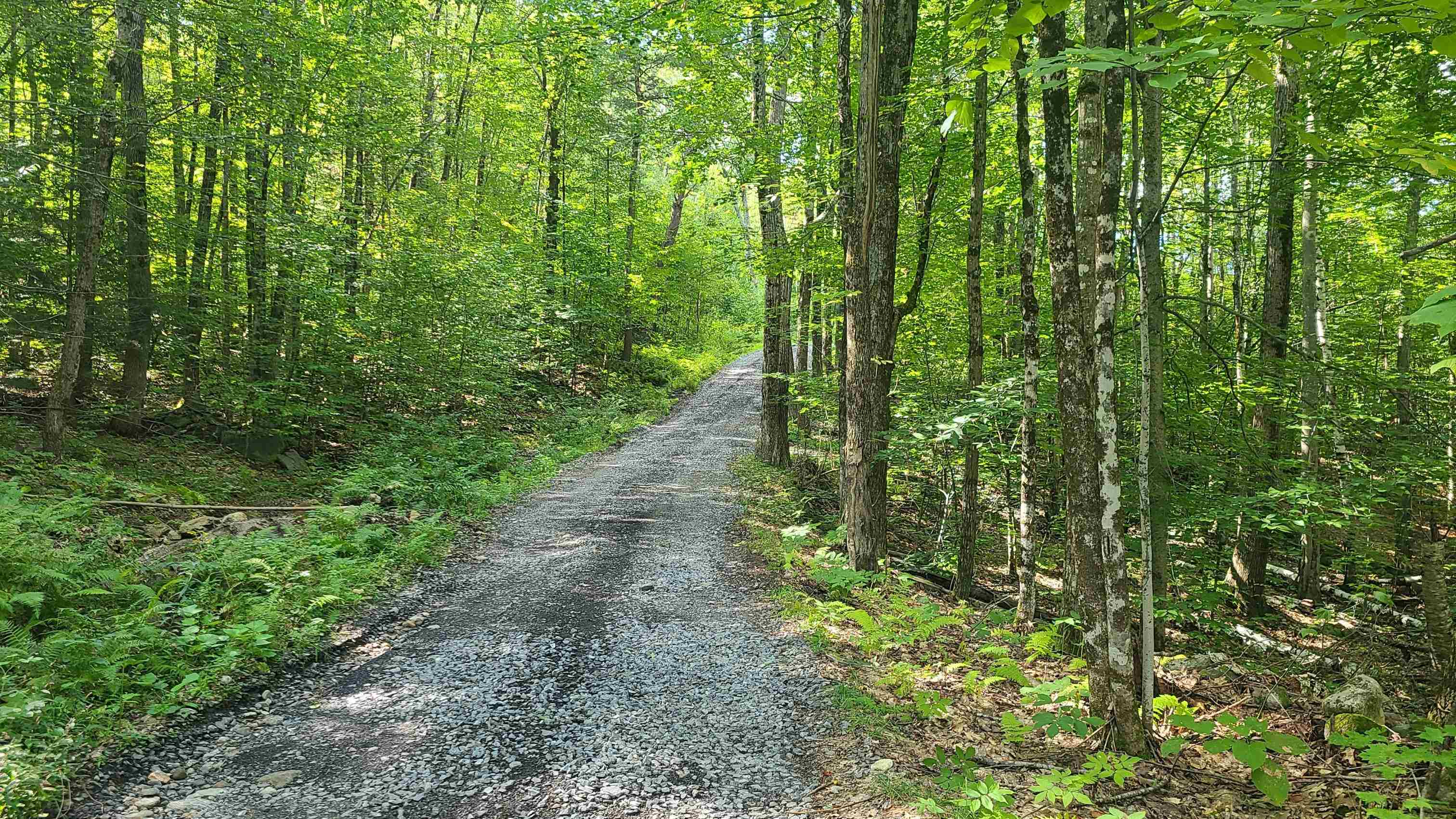 Acworth NH 03601Land for sale $List Price is $69,000