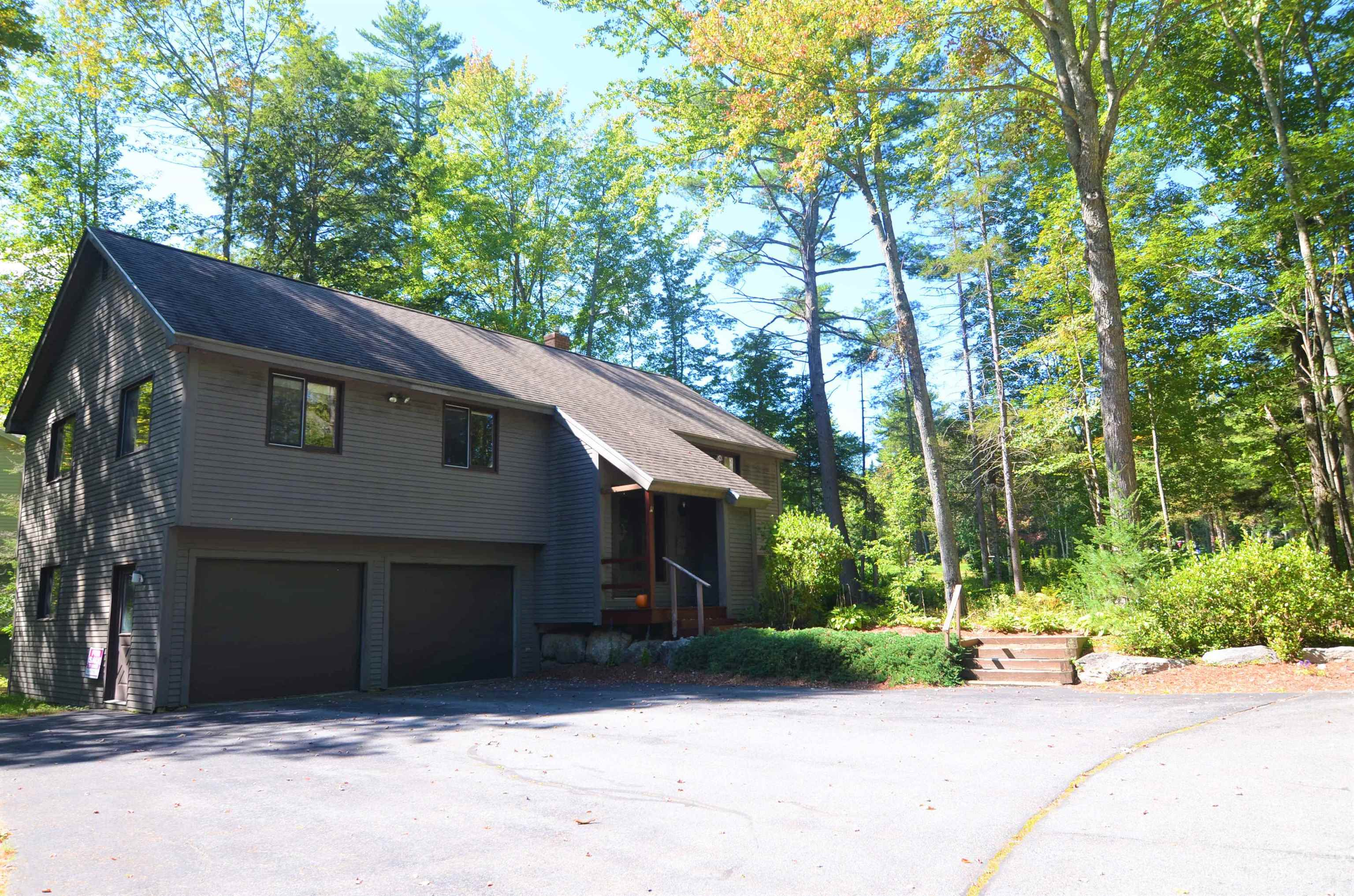 Village of Eastman in Town of Grantham NH  03753Home for sale $List Price is $389,000