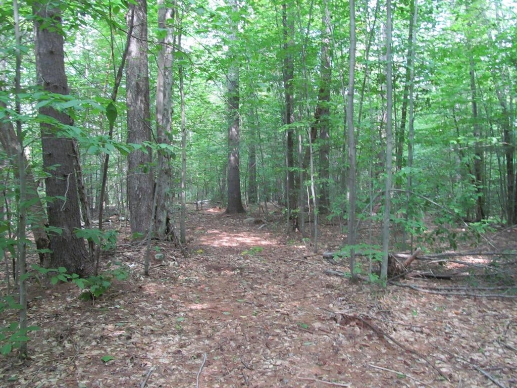 Newport NH 03773Land for sale $List Price is $99,500