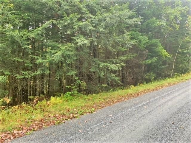 Village of Eastman in Town of Grantham NH  03753Land for sale $List Price is $14,900