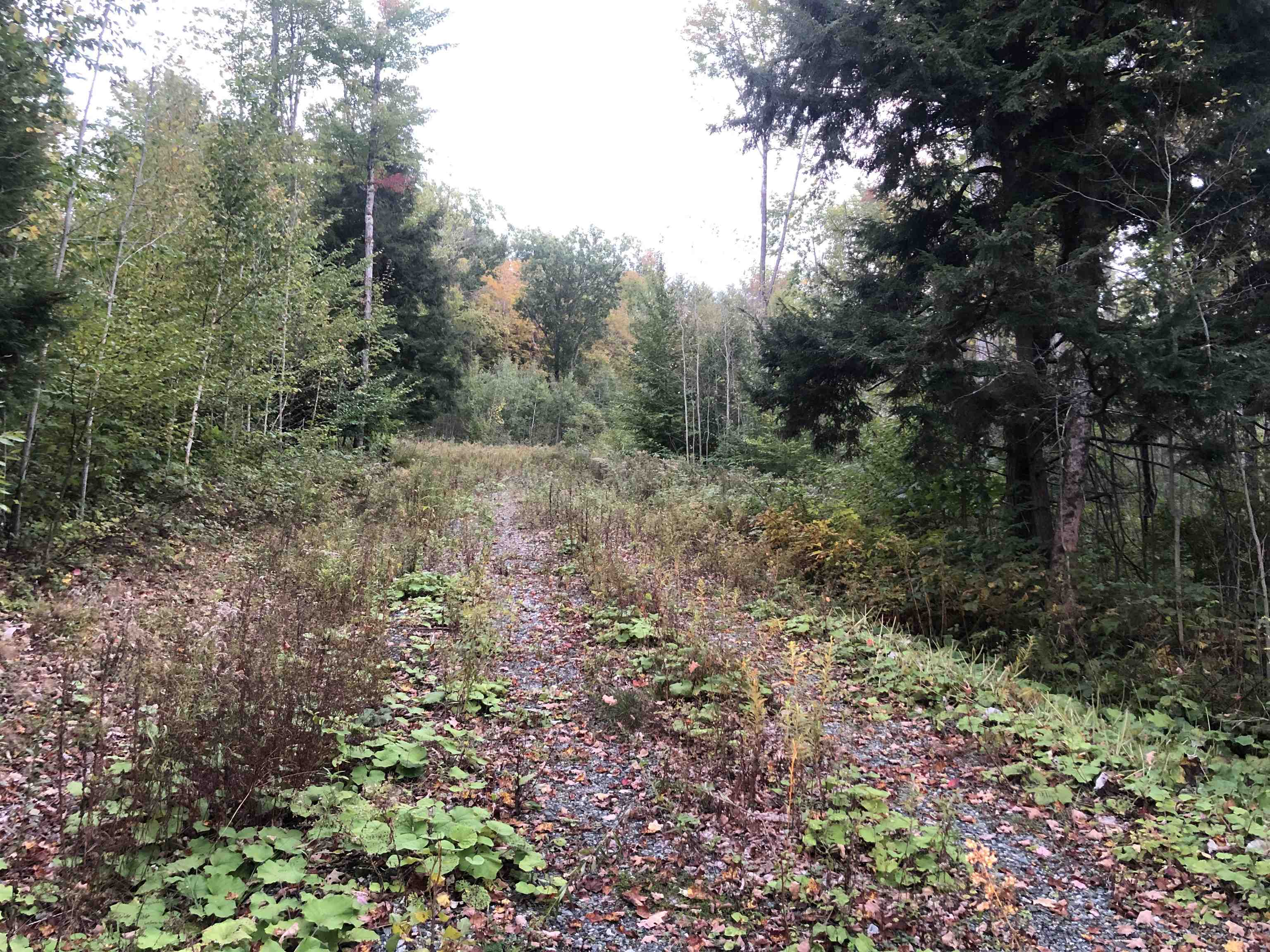 Plainfield NH 03781Land for sale $List Price is $120,000