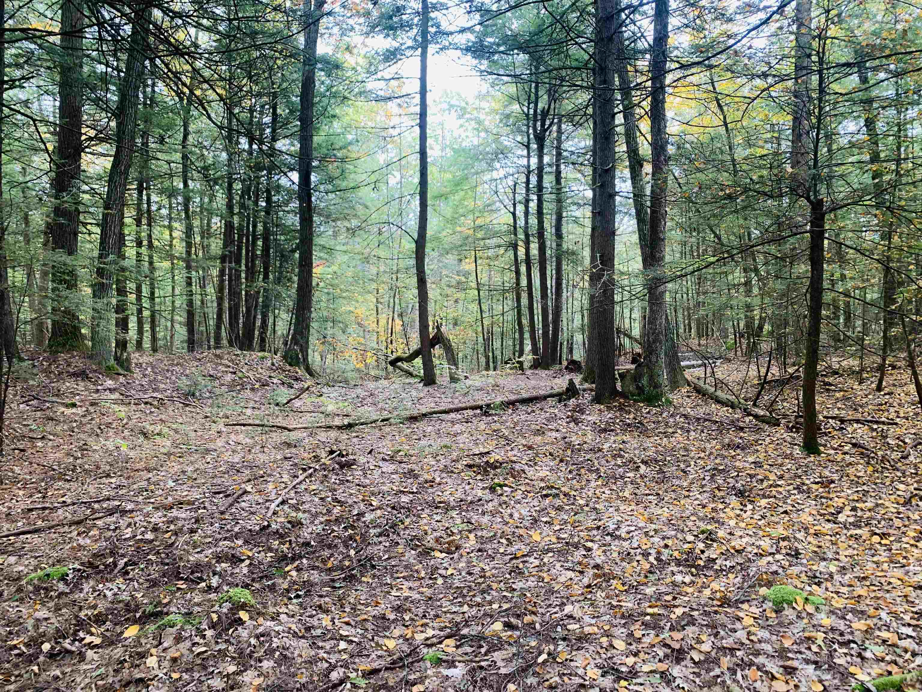 Charlestown NH 03603Land for sale $List Price is $69,900