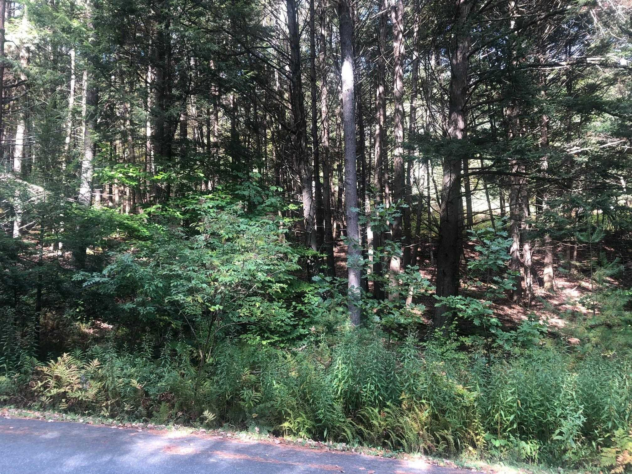 Village of Quechee in Town of Hartford VT  05047Land for sale $List Price is $70,000